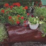 Декоротивные контейнеры для сада