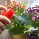 Препараты для растений от вредителей и болезней