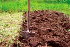 Перекопка почвы осенью